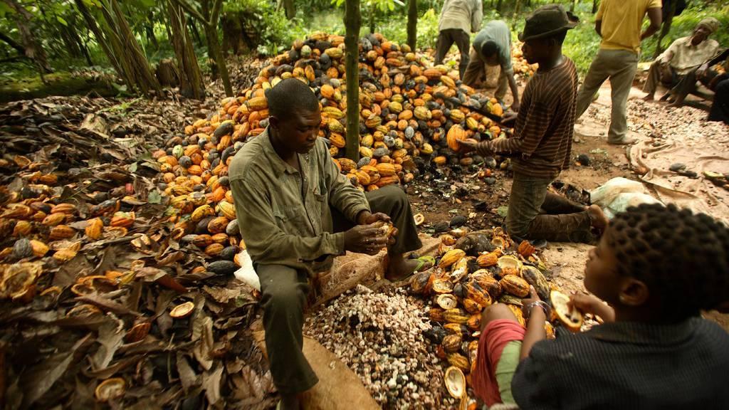 Gemessen an ihrer Bevölkerung hat die Schweiz einen weltweit hohen Kakao-Fussabdruck. (Symbolbild)