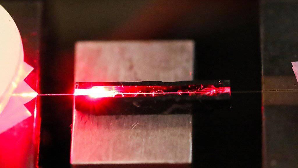 Anders als Glasfasern reagiert Spinnenseide auf die Anwesenheit chemischer Substanzen und verändert seine Lichtleiteigenschaften.