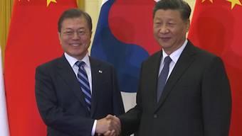 Der chinesische Staats- und Parteichef Xi Jinping (rechts) empfing am Montag in Peking unter anderem den südkoreanischen Präsidenten Moon Jae In zu Gesprächen. Es ging dabei primär um den Atomkonflikt mit Nordkorea.