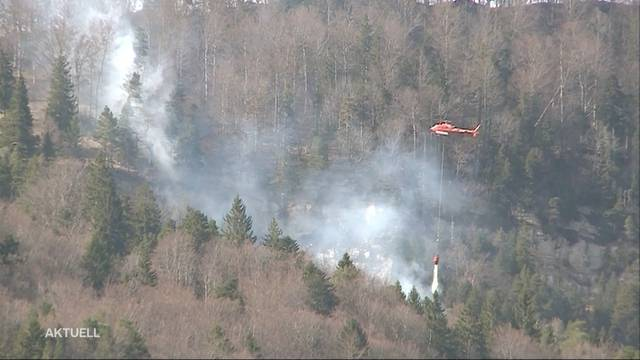 Waldbrand bei Günsberg