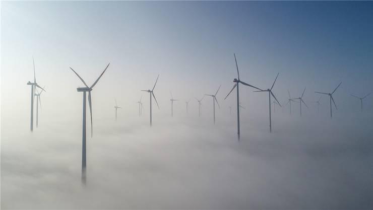 In Beinwil soll ein Windpark entstehen.