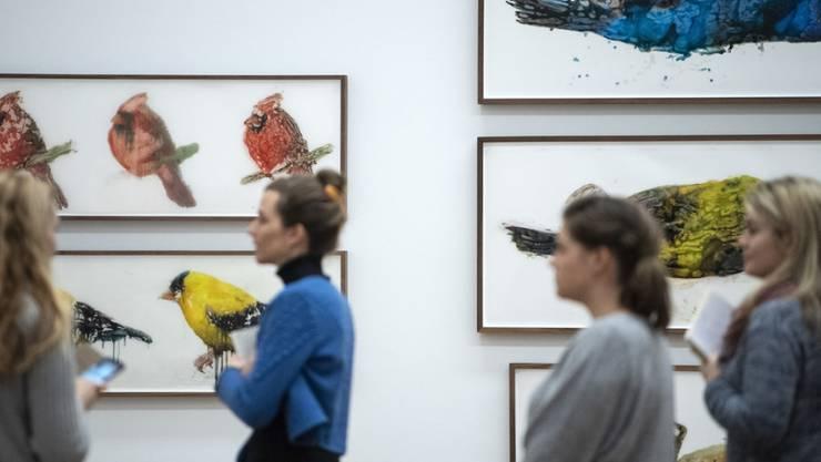 """Die Serie """"Angry Birds of America"""" von Ida Applebroog im Kunstmuseum Thun."""