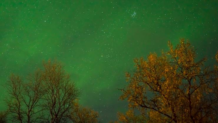 Zauberhafte Nordlichter im finnischen Lappland.