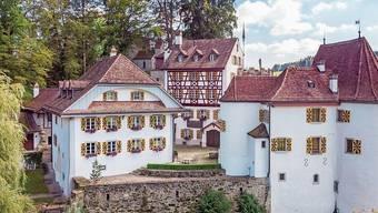 Mit diesem Bild wird die Teufenthaler Trostburg jetzt zum Kauf angeboten.
