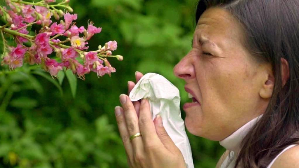 Die Pollensaison 2020 hat begonnen. Milde Temperaturen und trockenes Wetter führen stellenweise  zu einem frühzeitigen Pollenflug von Haseln und Erlen. (Symbolbild)