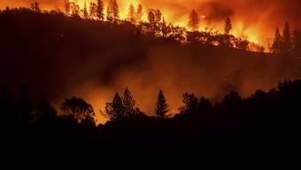 Resultat der Ermittlungen: Der verheerende Waldbrand in der nordkalifornischen Ortschaft Paradise mit 85 Todesopfern im November 2018 ist durch defekte Stromleitungen ausgelöst worden. (Archivbild)