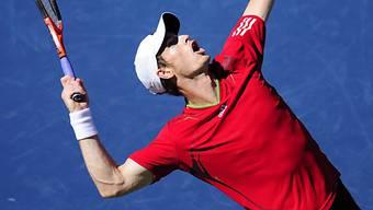 Auch Andy Murray im US-Open-Halbfinal