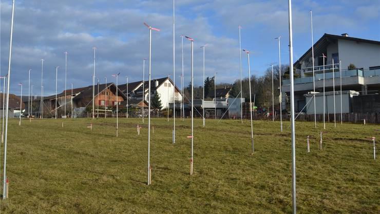 Der Stangenwald im neu erschlossenen Ausserdorf kündigt eine grössere Siedlung an, die spätestens Ende 2016 bezugsbereit sein soll. sl