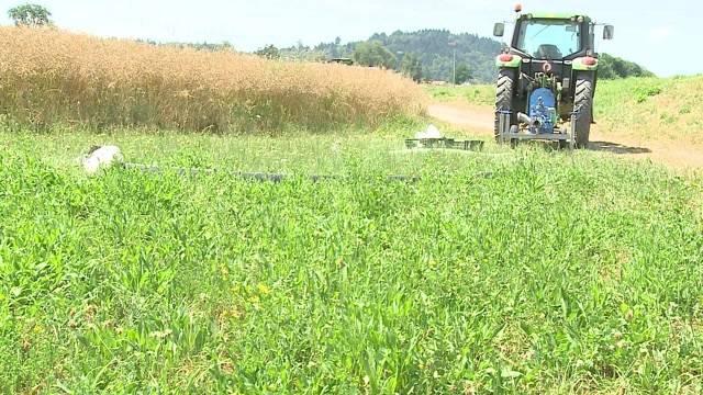 Bewässerungsverbot für Bauern