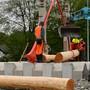 Neues Floss für Boningens Kreiselschmuck; das Holz stammt von Douglasien.