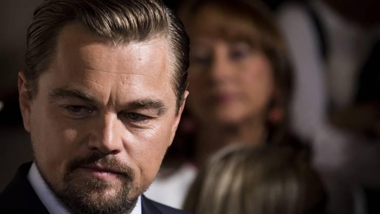 Die Stiftung von US-Schauspieler und Umweltaktivist Leonardo DiCaprio spendet fünf Millionen Dollar für den Schutz des Amazonas.