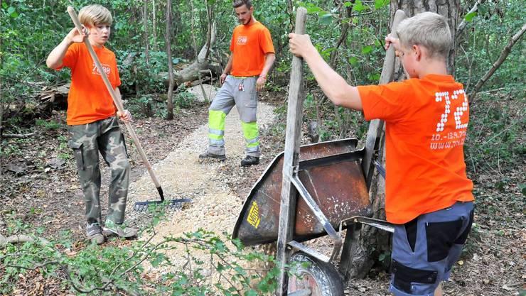 Kinder und Jugendliche bauen ein neues Waldwegli: Der Baselbieter Freiwilligenpreis 2015 wird an die «Aktion 72 Stunden» verliehen. (Archiv)