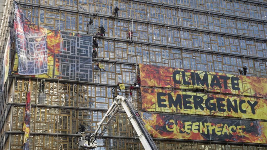 Nachhaltigkeitsfonds sind laut Greenpeace oft zu wenig «grün»