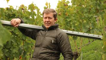 Für den 51-jährigen Hoss Hauksson ist die biodynamische Bewirtschaftung seiner Reben – wie hier in der Geissberg – eine Herzensangelegenheit.