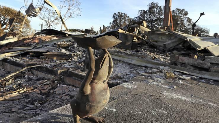 Ein Frosch aus Metall vor der Ruine eines verbrannten Hauses in Malibu. Bei den Bränden sind mindestens 50 Menschen ums Leben gekommen. (Foto: Reed Saxon/AP)