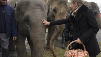 Als Dank für den Blumenstrauss streichelt Karin Keller-Sutter die Elefanten-Ehrendamen.