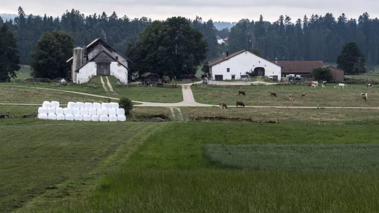 Wer beim Verkauf eines Bauernhofes einen Gewinn macht, soll künftig keine Bundessteuer zahlen müssen (Archiv).