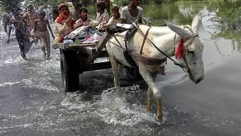 Weite Teile Pakistans liegen unter Wasser