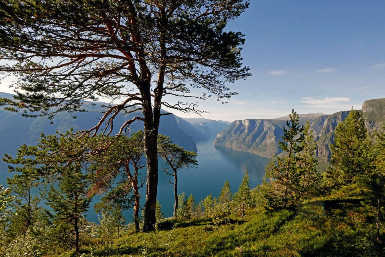 Ausblick auf den Aurlandsfjord, Norwegen (© Corrado Filipponi)