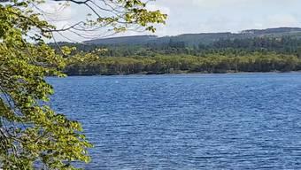 Am 1. Juni filmte Tony Bligh diese kuriosen Wellen auf dem Loch Ness.