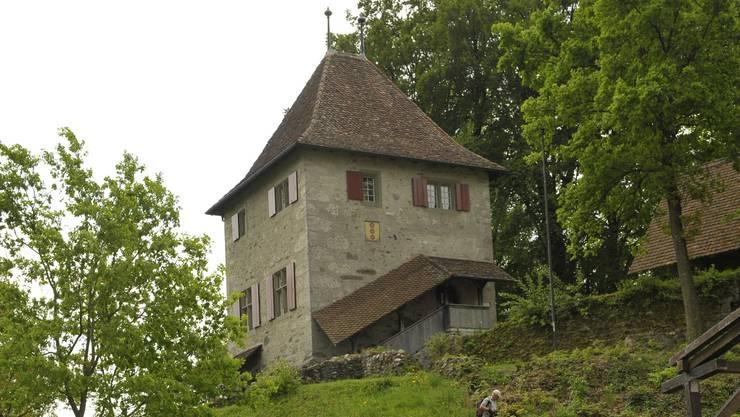 Schloss Buchegg als Namensgeberin.