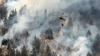 Mit 800 Tonnen Wasser wurden die Waldbrände in den Bündner Südtälern und in der Tessiner Leventina bekämpft.