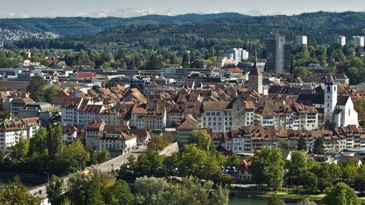 Aarau bekommt 100 weisse Gänse. Archiv