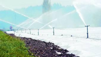 Wasserverbrauch: Brauchen die Bauern viel Wasser für ihre Felder steigt der Gesamtbedarf. H. Bärtschi