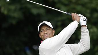 Tiger Woods gut im Schwung