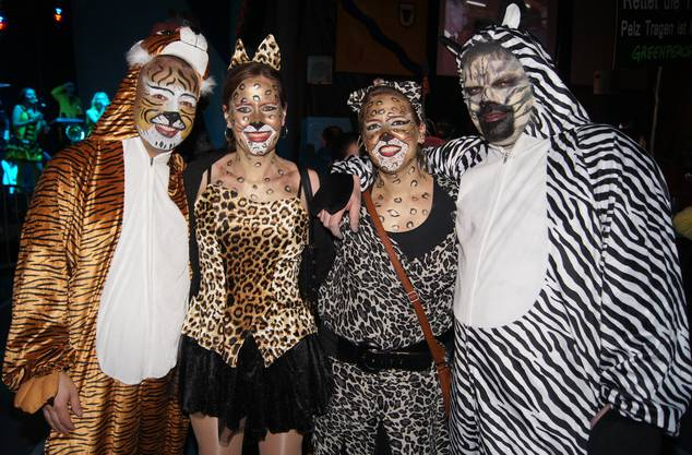 Die Vier kommen direkt von Zürcher Zoo