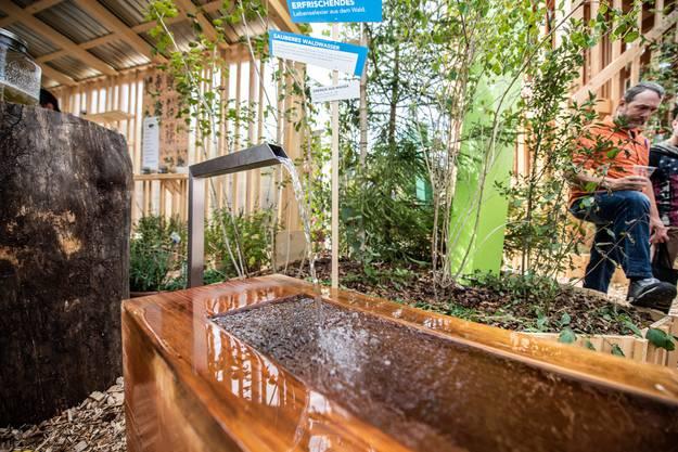 Auch einen Holz-Brunnen gibts...