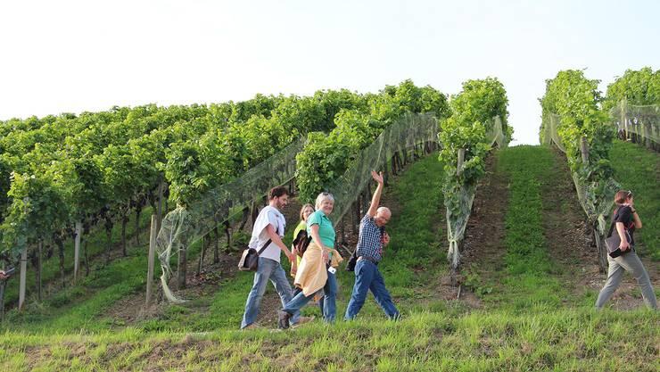 Fröhliche Weinwanderer vor den Reben.