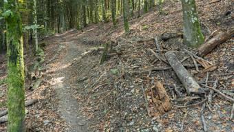 Nach mehreren Unfällen ist fürs Erste Schluss: Hirschthal hat diesen ehemaligen Sprung und alle anderen Bauten am Böhler abgebrochen.