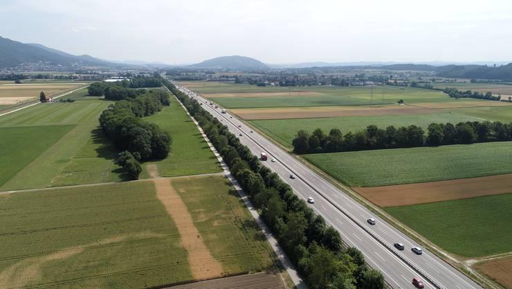 Die Erinnerung an die alte Dünnern zieht sich mitten im Gäu neben der Autobahn A1 durch die Ackerfelder.
