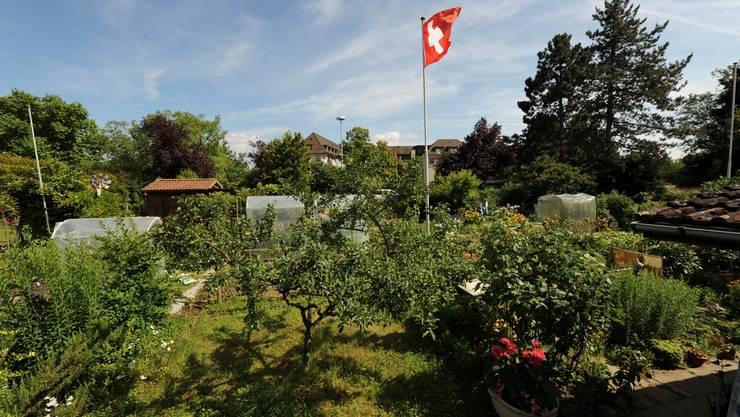 Der Grosse Rat will 80 Prozent der Familiengärten auf Basler Boden sichern.  Archiv/Martin Töngi