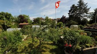 Die Familiengärten am Neusatzweg beim Bethesdaspital in Basel.martin töngi