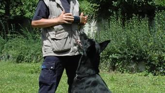 Liebevoll, aber konsequent:Hugo Krapf, Trainer der Hundeschule Züribiet, setzt Regeln. (Bild: KAS)