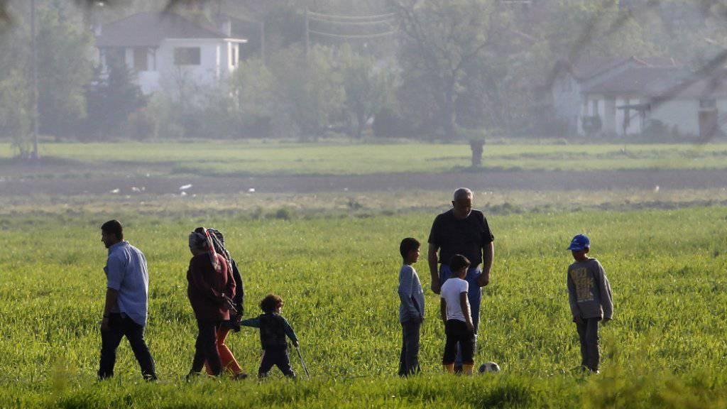 Flüchtlinge in einem Feld bei der griechisch-mazedonischen Grenzstation Idomeni: Angeblich will die EU-Kommission vorschlagen, dass Asylverfahren künftig auf EU-Ebene geführt werden.