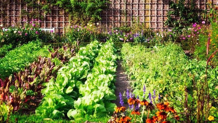 Permakultur Im Garten Wohnen Leben Und Stil Sponsored By Akb