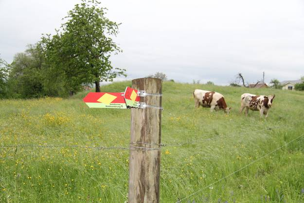 ... und über Felder.