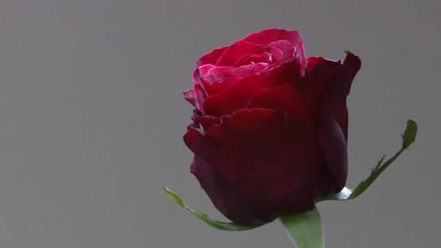 Sinn und Unsinn des Valentinstags