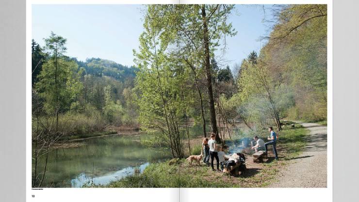 Grillieren am Franzosenweiher in Spreitenbach