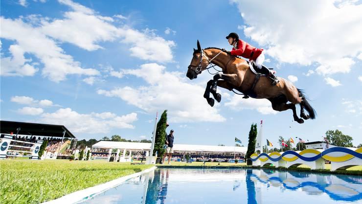 Die Begeisterung für den Springsport steckt bei weitem nicht alle an. Die Tierschutzorganisation Peta kritisiert: Regelmässig würden die Pferde zusammenbrechen oder in die Hindernisse hineinstürzen, denn sie würden bei diesem Sport «gegen ihren Willen gezwungen, über riesige Hindernisse zu springen». (Archivbild)
