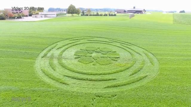 Graskreis lockt Übersinnlichen-Touristen