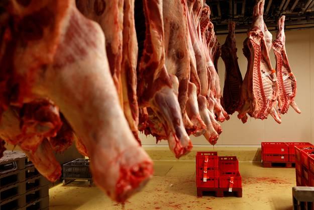 Nach der Schlachtung ruhen die Tierhälften 48 Stunden, bis die Leichenstarre durch ist