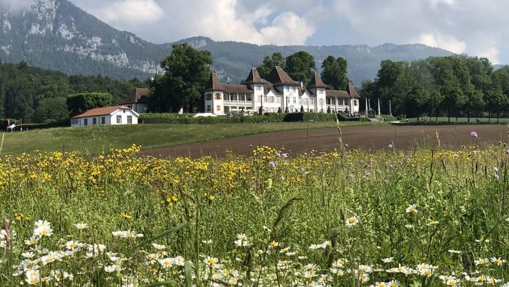 Schlösser und Burgen im Kanton Solothurn