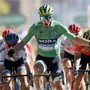 12. Etappensieg an der Tour de France: Peter Sagan lässt bei der Sprintankunft in Colmar die Muskeln spielen