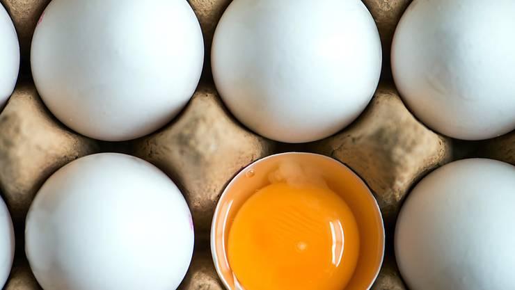 Der Skandal um Eier, die mit einem Insektizid belastet sind, erreicht nach den Niederlanden, Belgien und Deutschland nun auch die Schweiz: Aldi Schweiz nimmt vorsorglich Importeier aus den Regalen. (Symbolbild)