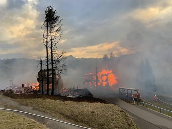 Weil das Wasser in den Löschfahrzeugen nicht ausreichte, musste die Feuerwehr über mehrere Kilometer Wasserleitungen legen, um den Grossbrand zu bekämpfen.