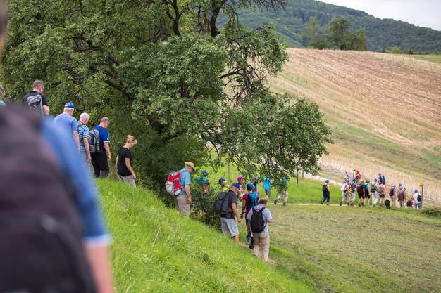 98 Leserwanderinnen und Leserwanderer machten sich an diesem Freitagabend auf, um von der Staffelegg auf die Barmelweid zu laufen